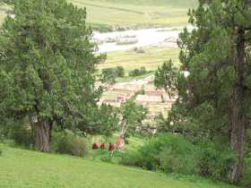 Reting Forest: Monks resting on the circuit near a shrine next to a juniper tree with trunk painted red.