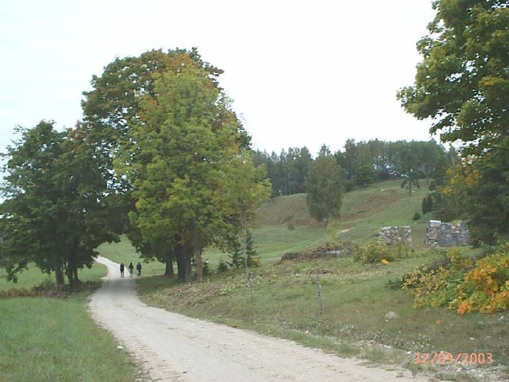 Vaade Paluküla hiiemäele