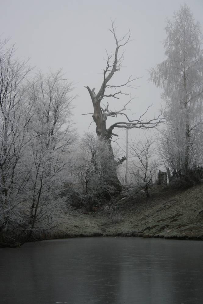 Поминальное дерево Минина и Партаса
