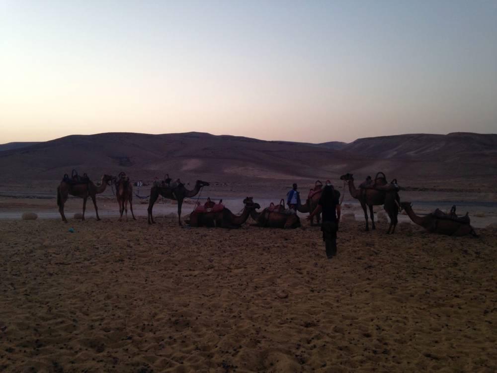 Пыстынный Израиль