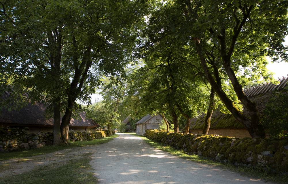 Рыбацкая деревня Когува