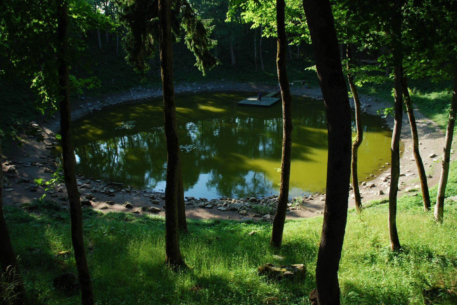Roheline järv