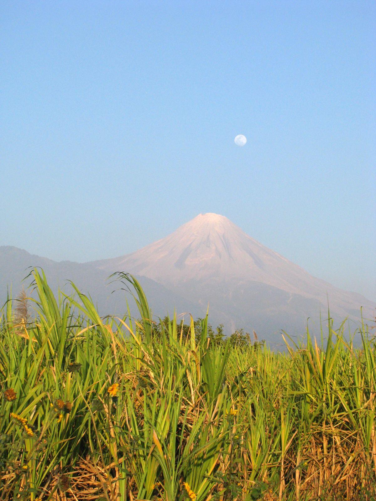 Colima vulkaan