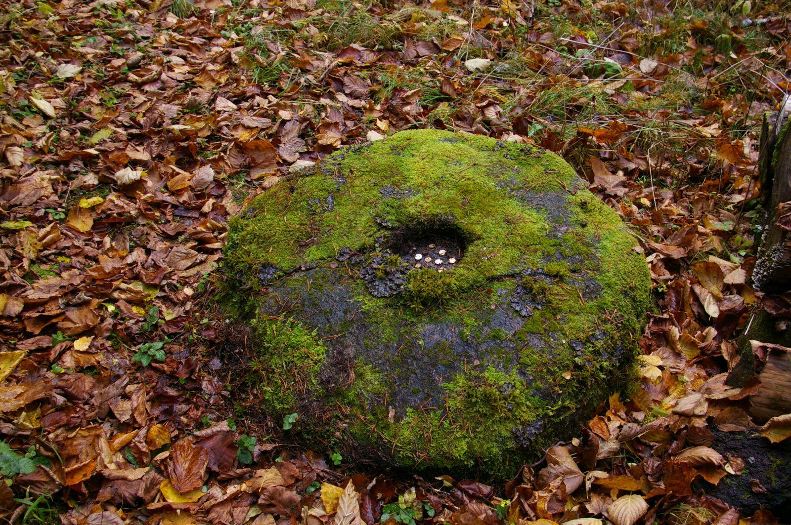 Roiupalu kivi