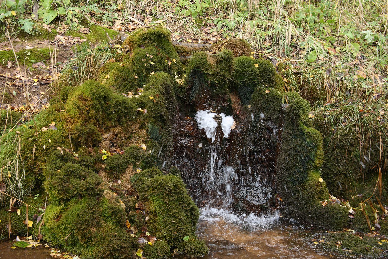 Vesioinas ööbikuorus