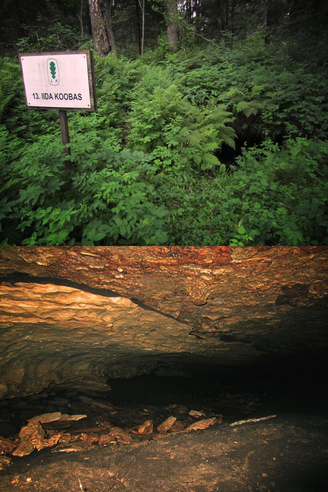 Iida koobas