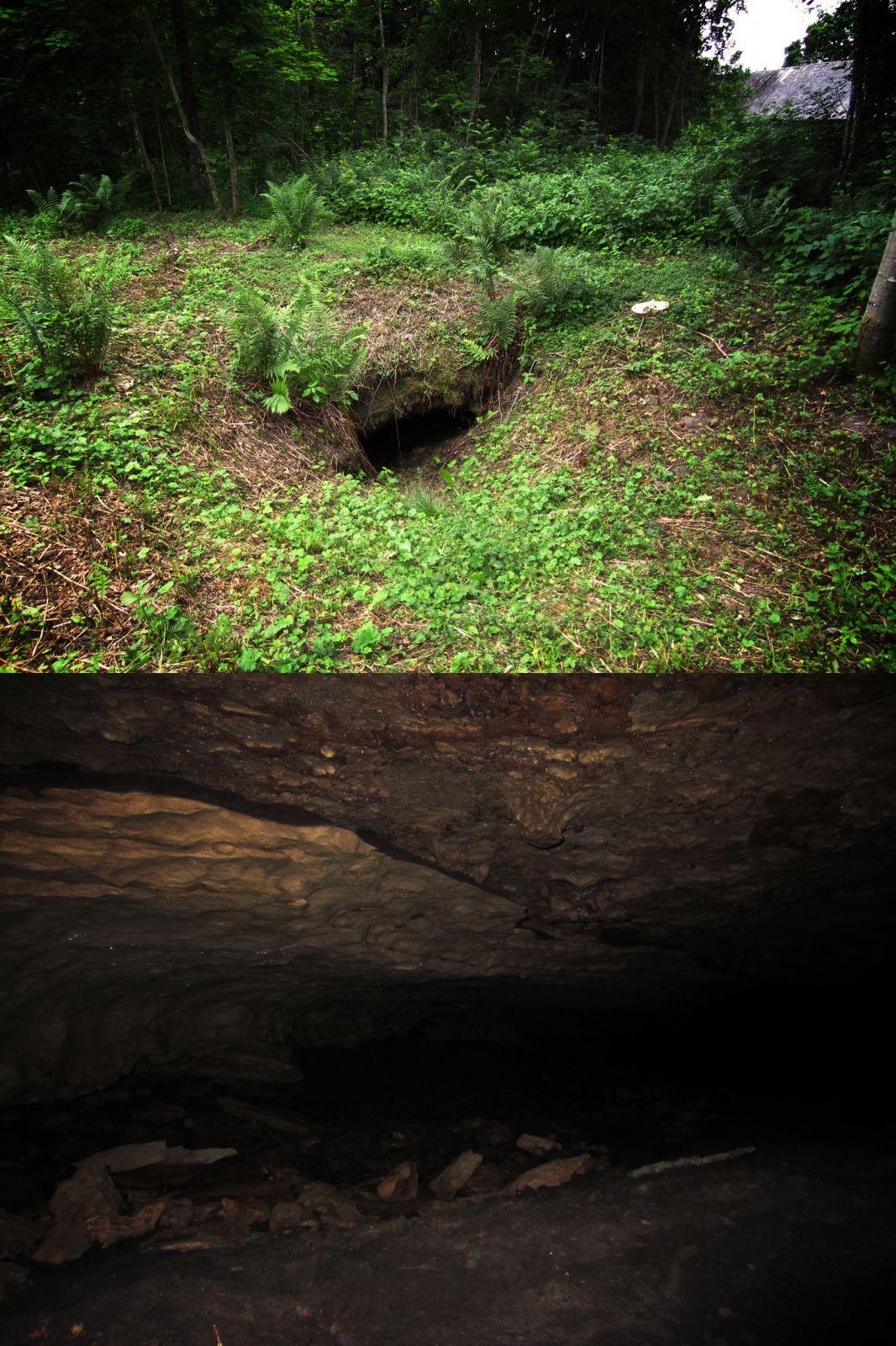 Kuimetsa Suur koobas