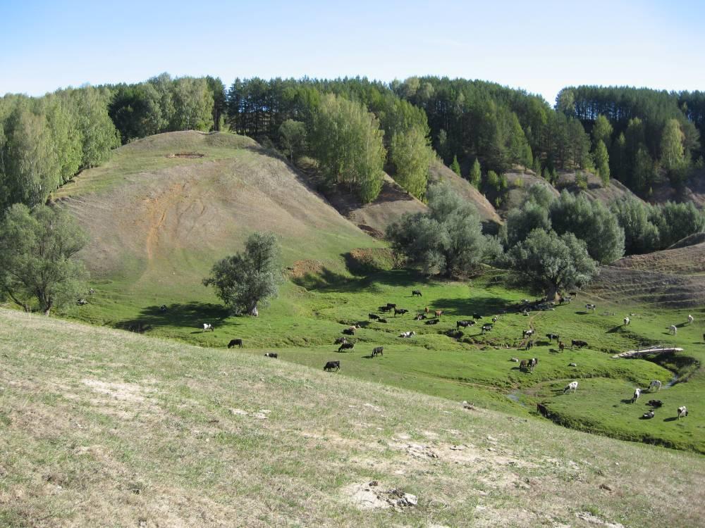 Пайгусовское городище-жертвенник
