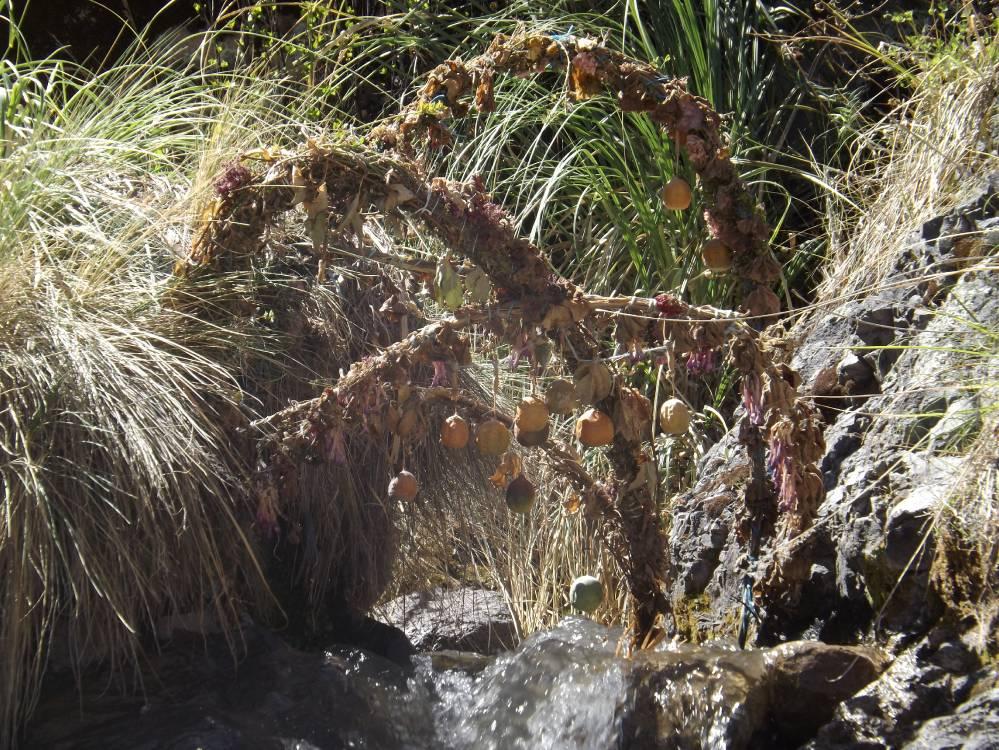 Veekanalite valvur Uyu-Uyu juures