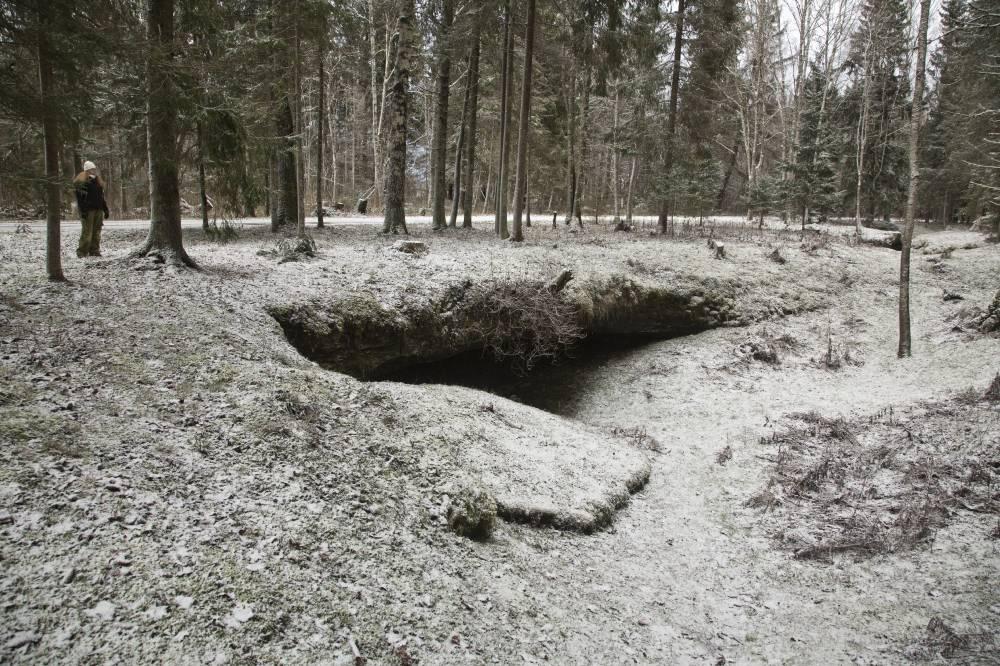 Esimene lumi Kuimetsa karstialal