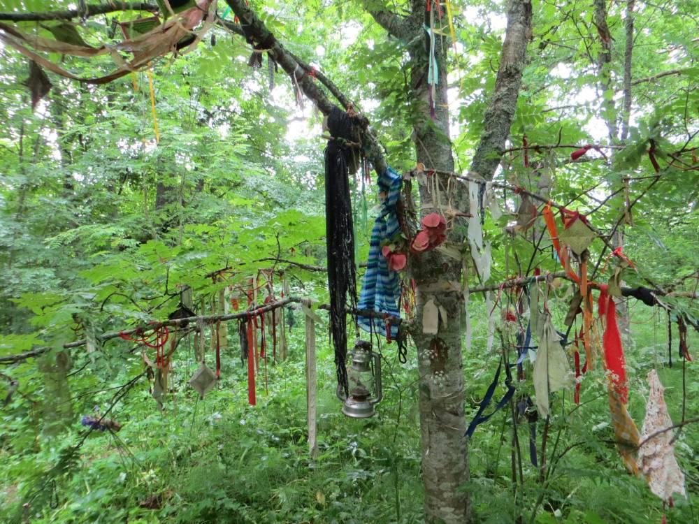 Lugude puu