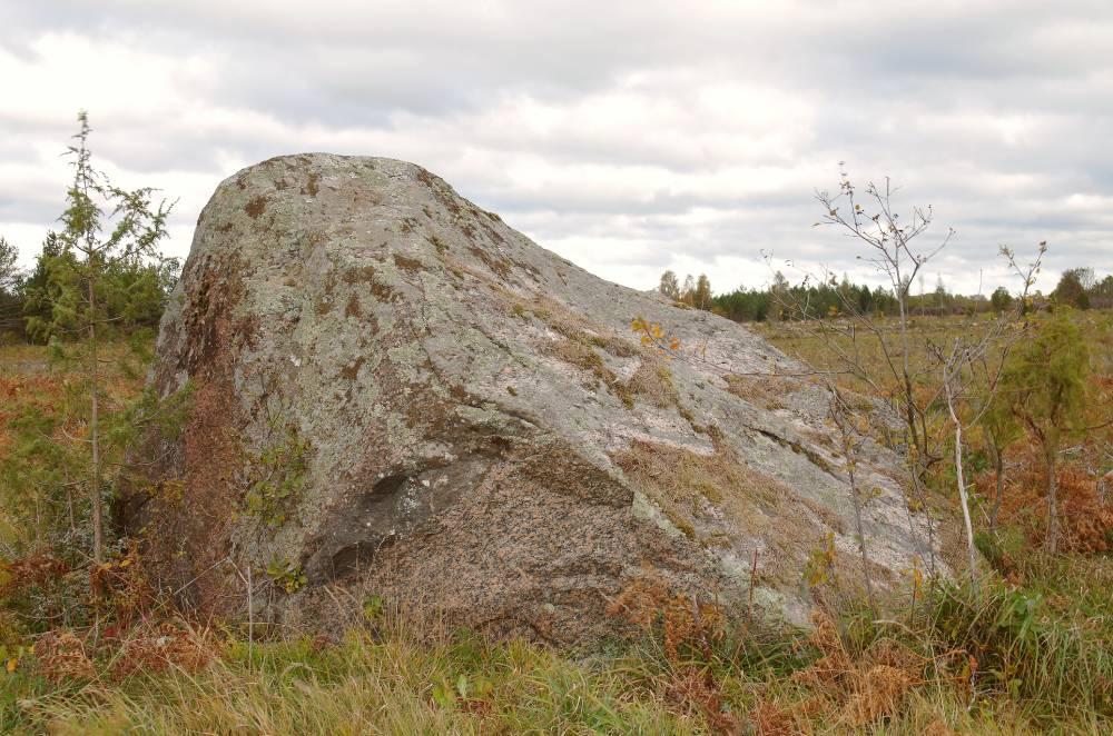 Vanapagana kivi