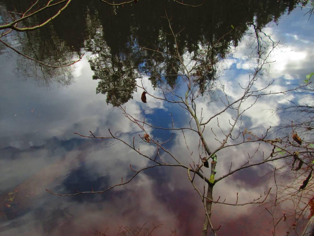 Vaade Uku koopast: killuke taevast veepeeglis