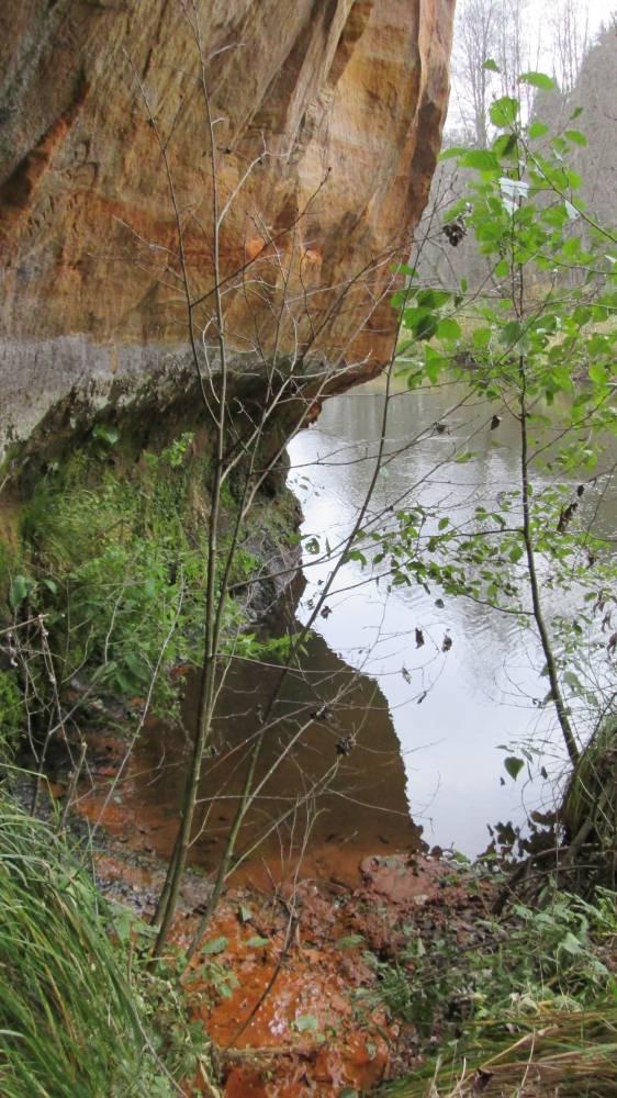 Vaade Uku koopast: allikast saab jõgi