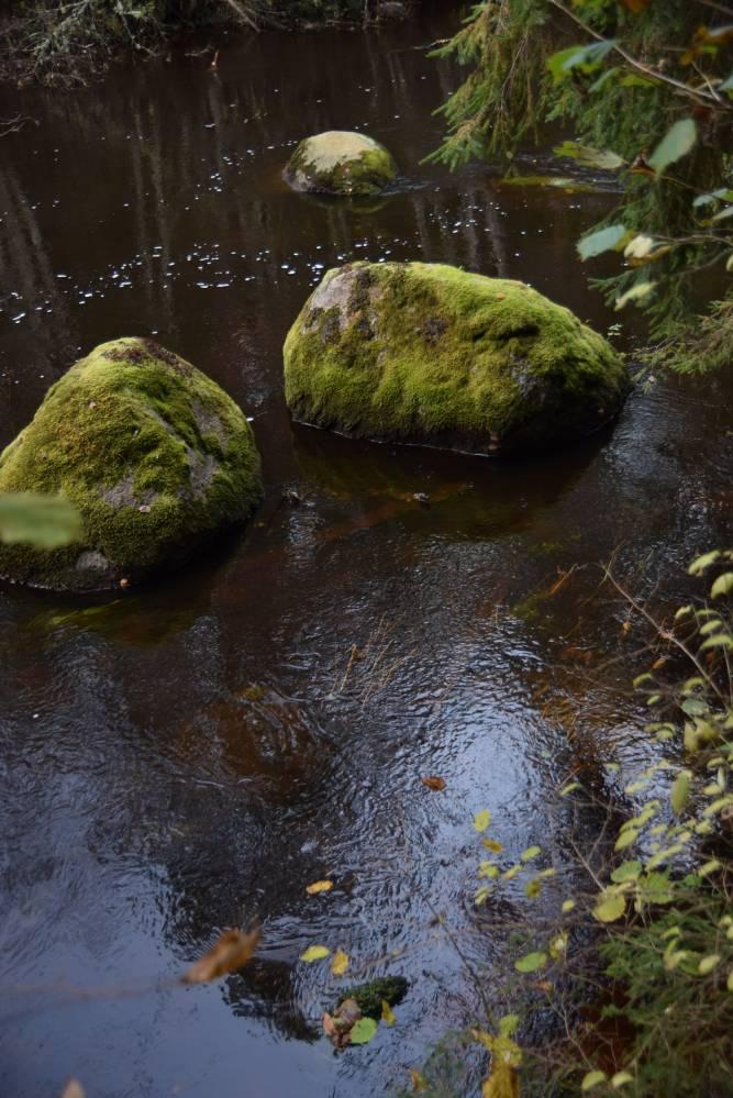 Kivid Ahja jões