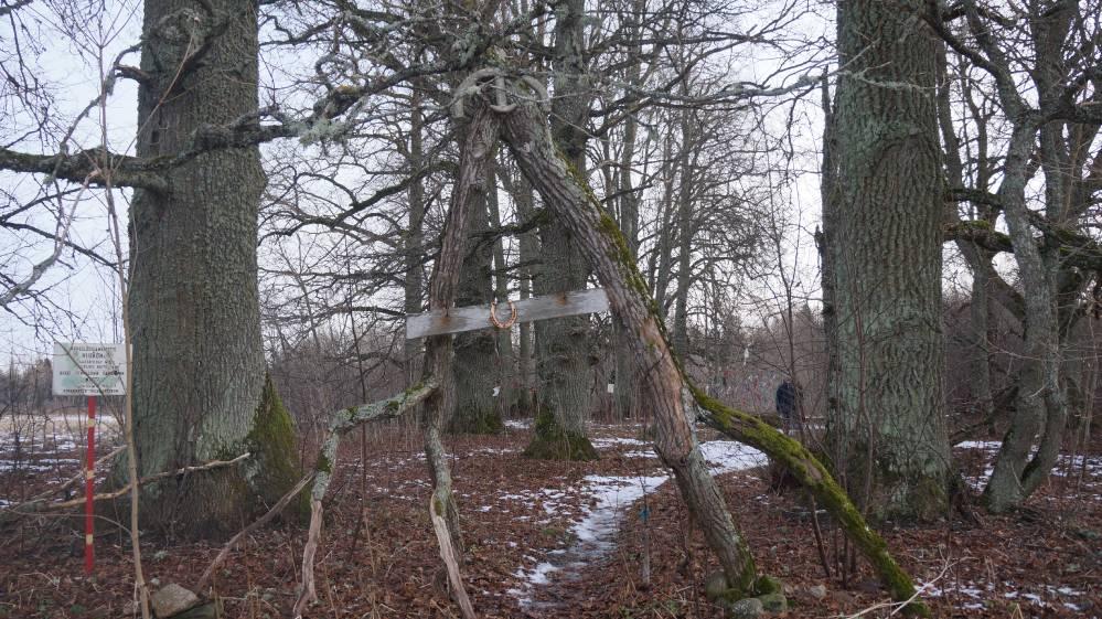 Värav pühapaikka