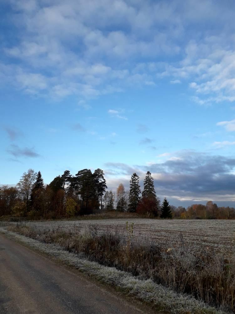 Kitlimägi