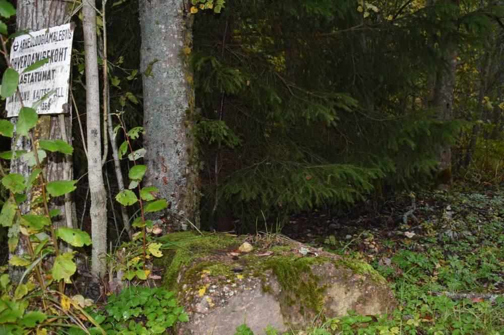 Metsanurgal olev ohvrikivi ohvriandidega