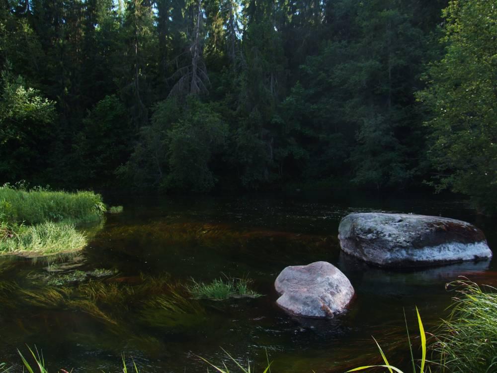 Река-жеребенок