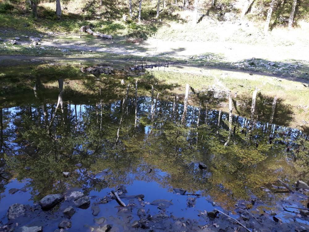 Peegeldus Kaali järves
