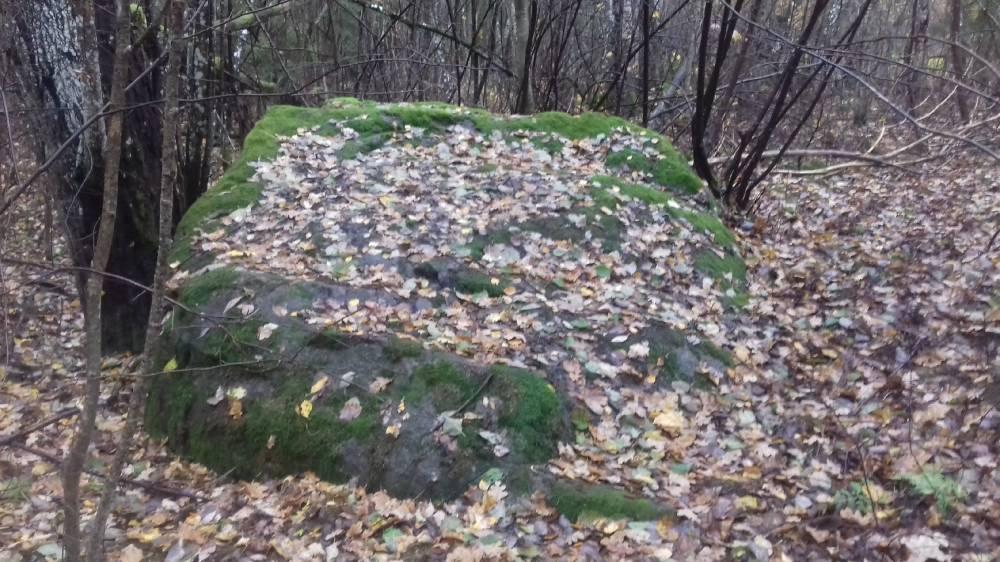 Kolletamispäeval Suure Kullaaug püha kivi kaemas