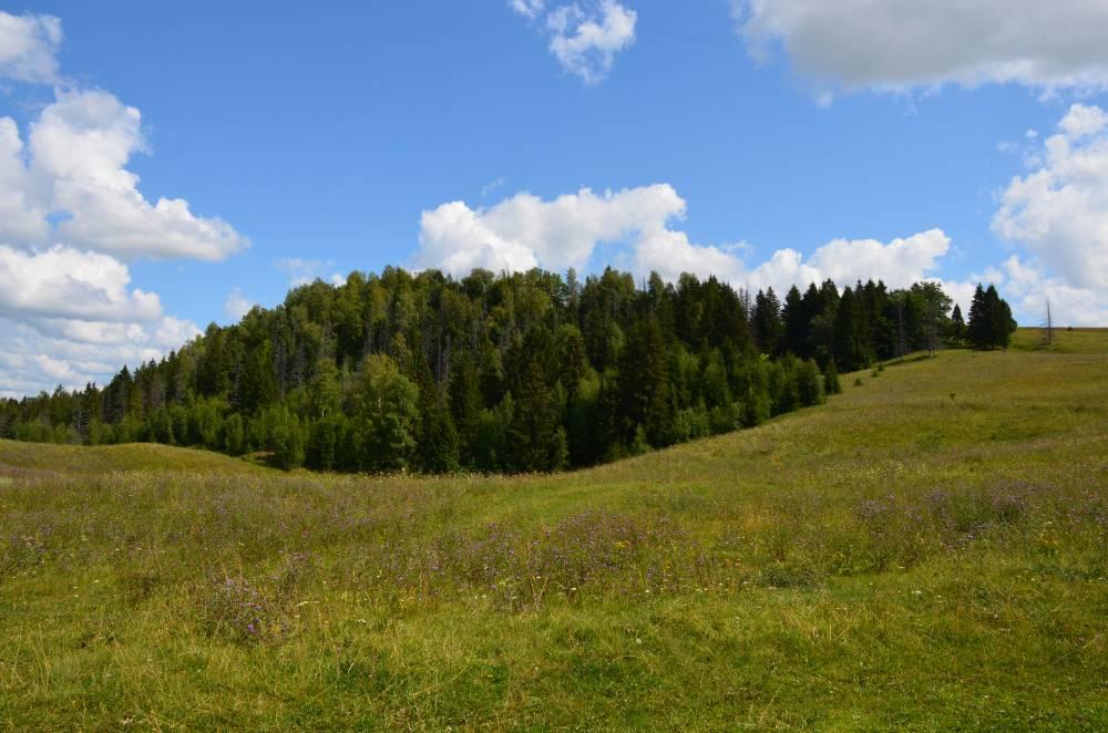 Гора-крепость Карман Курык