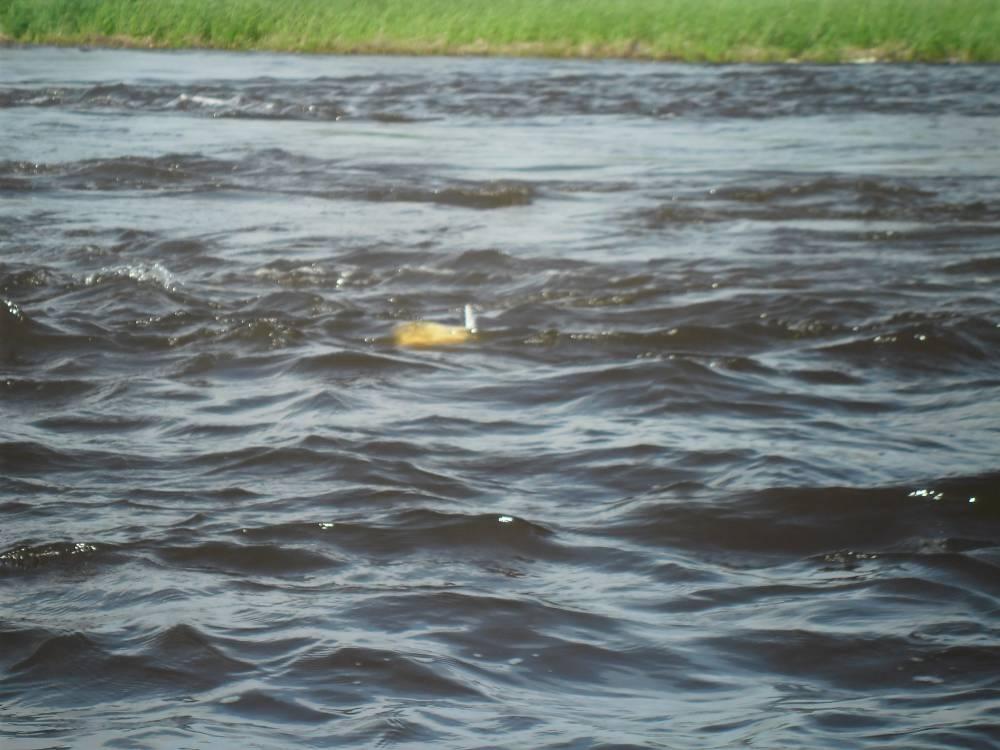 большой водоворот Вит-Хон , возле деревни Тугияны, Белоярского района , Ханты-Мансийского автономного округа-Югра